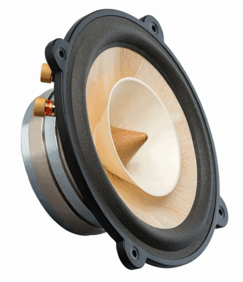 electrostatic speakers for middle range frequency band
